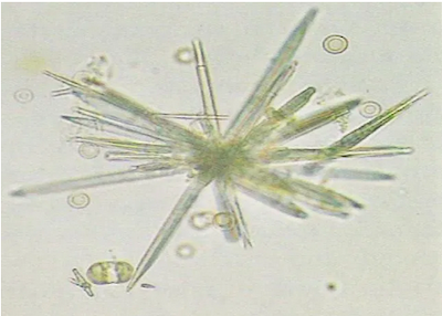 sulfanomid-kristalleri